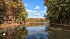 How to Plan for the Perfect Pure Michigan Fall Color Tour in the Great Lakes Bay Region