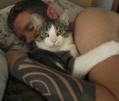 man's best friend cat cuddles human dad