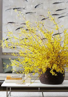 Forsythia arrangement, kevin sharkey for martha stewart