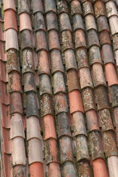 A Venetian tiled roof. Again, variations of one color. Ceramic Roof Tiles, Clay Roof Tiles, Red Tiles, Tile Patterns, Textures Patterns, Spanish Tile Roof, Solar Tiles, Provence, Pottery Houses