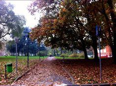 #Poesia di #autunno a #Milano