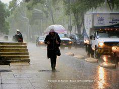 La lluvia en la ciudad. / The rain in the city.