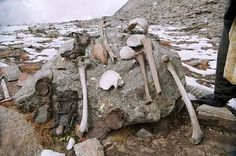 There's a lake in India full of ancient skeletons, all killed by blows to the head.In 1942 a British forest guard in Roopkund, India made an alarming discovery. Some 16,000 feet above sea level, at the bottom of a small valley, was a frozen lake absolutely full of skeletons. That summer, the ice melting revealed even more skeletal remains, floating in the water and lying haphazardly around the lake's edges. Something horrible had happened here.