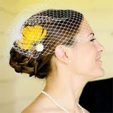 I am mildly obsessed with birdcage veils...