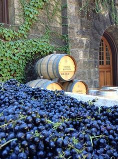 Nappa Valley winery of Chateau Montelena