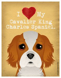 I Love My Cavalier King  I Heart My Cavalier by DogsIncorporated, $20.00