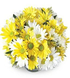Daisies and Daisy Pompons spring over the edges of a gorgeous bubble bowl to give this arrangement the playfulness of a summer day. Its mixture of white and vivid yellow flowers ensures that it will brighten up anyone's day. Daisy Wedding, Wedding Table Flowers, Wedding Centerpieces, Wedding Bouquets, Cut Flowers, Fresh Flowers, Yellow Flowers, Daisy Flowers, Flowers Garden