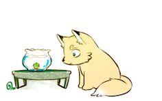 my gif my artwork zoro sanji zosan FOX SANJI Frightened Fox What's wrong with this Marimo