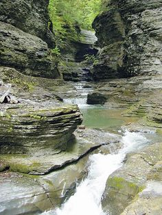 Watkins Glen State Park, New York, is one of the highlights of the Finger Lakes .