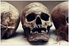 #skull by tw33s, via Flickr