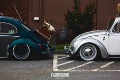 My 66 and my buddies 65 fresh and classy. #Volkswagen #beetle