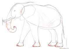 How to draw an African Elephant | Step by step Drawing tutorials
