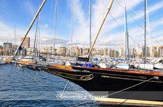 Cruceristas y Cruceros - Galería: ALICANTE