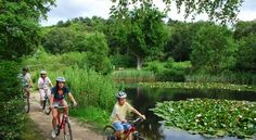 Norfolk cycling holidays http://www.kellingheath.co.uk/