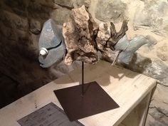 I pesci di Alby Rocca in mostra a Casté (LA Spezia-Italy)