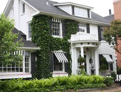 White house with ivy, lush landscaping, black and white striped awnings in Hinsdale, IL