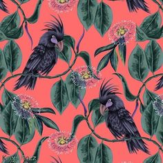 Black Cockatoo. Available exclusively at @patternbank