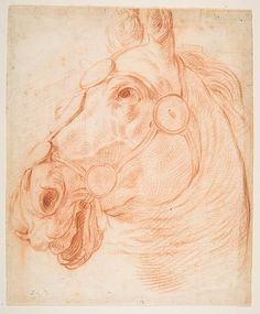 Circle of Baldassarre Franceschini (il Volterrano) (Italian, 1611–1690). Study for a Horse's Head, ca. 1650. The Metropolitan Museum of Art, New York. Gift of Harry G. Friedman, 1957 (57.658.91)
