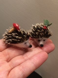 Hey, I found this really awesome Etsy listing at https://www.etsy.com/listing/274658042/needle-felted-hedgehog-2-baby-soft