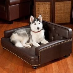 awesome Couch Bed For Dogs , Good Couch Bed For Dogs 50 For Your Sofa Design Ideas with Couch Bed For Dogs , http://sofascouch.com/couch-bed-for-dogs-2/35648
