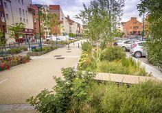 land-act. Landscape Architecture Design, Architecture Plan, Contemporary Landscape, Urban Landscape, Rue Verte, Plaza Design, Urban Design Concept, Green Street, Water Management