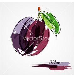 Plum fruit vector 2496729 - by Kgkarolina on VectorStock®