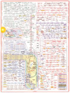 Our bodies metabolism pathways show the beauty insane complexity of human biochemistry!!