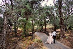 Love in old olive garden.  Corfu   Greece www.barteczko.pl