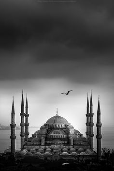 Blue Mosque - Sultan Ahmed Mosque Istanbul, Turkey. One of the most awesome places of worship I've ever been to.