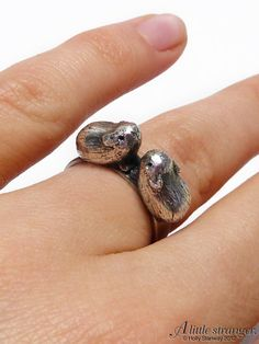 Kissing Guinea Pigs Silver Ring.