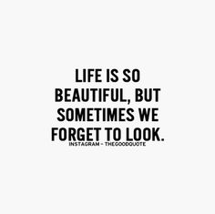 Life is so beautiful, but sometimes we forget to look.