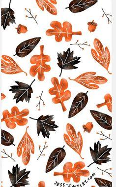 Fall                                                                                                                                                                                 More