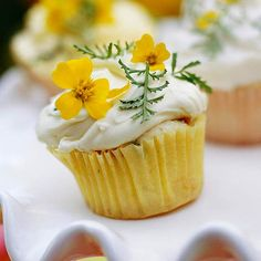 For a tasty spring treat, make these Flower-Power Mini Cupcakes. Get the recipe here: http://www.bhg.com/recipe/cupcakes/flower-power-mini-cupcakes/?socsrc=bhgpin041012flowercupcakes