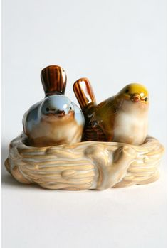 Salt and pepper birds in a nest. I have and adore these!
