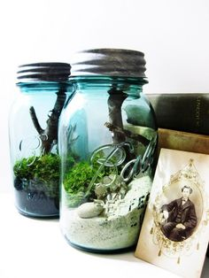Mason Jar Terrariums. Very pretty with the blue jars!