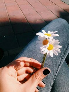 15 ideas nails black grunge beauty for 2019 Tumblr Photography, Photography Poses, Nature Photography, Photography Flowers, Hipster Photography, Black Photography, Amazing Photography, Travel Photography, Tumblr Hipster