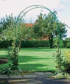 Buy Steel Garden Rose Arch at Argos.co.uk, visit Argos.co.uk to shop online for Decorative arches