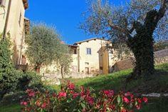 L'Olivo Italiano - Scuola di Lingua e Cultura Italiana alle porte di Firenze - Italian Language & Culture School near Florence - Antico Spedale del Bigallo