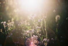光 | Flickr - Photo Sharing!