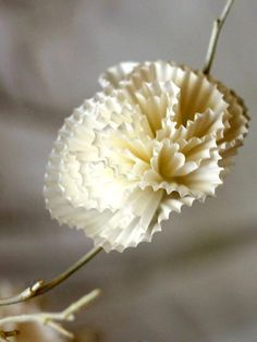 How to Make Paper Flowers Using Cupcake Liners or Coffee Filters:  From DIYNetwork.com from DIYnetwork.com