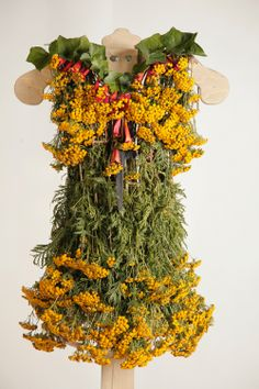 Desirable Dresses Made Entirely From Nature Nicole Dextras The Little Green Dress Project