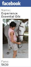 The best home remedies for horses include Essential Oils. Use for horse relaxing, sheath cleaning, scratches and fly spray! Oils make great natural remedies for horses. Learn how to use them here. Hair Loss Essential Oils, Essential Oils For Pain, Therapeutic Grade Essential Oils, Homemade Fly Spray, Raindrop Technique, Remedies For Nausea, Natural Remedies, Natural Treatments, Health Remedies