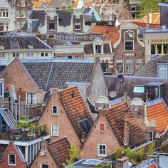 Dutch rooftops Dutch People, Going Dutch, South Holland, Travel Europe, Luxembourg, Dream Vacations, Rooftop, Belgium, Netherlands
