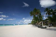 Taipan | Boracay - Planen Sie Ihre Traumreise