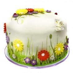 Butterfly Meadows Cake