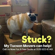 We'll make sure your next move is hassle-free. Schedule your next pick up with My Tucson Movers!