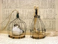 cute cages