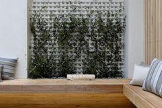 klimplant-tuin