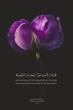 Islamic Art and Quotes Quran Quotes Love, Beautiful Quran Quotes, Quran Quotes Inspirational, Hadith Quotes, Arabic Love Quotes, Muslim Quotes, Religious Quotes, Quran Verses About Love, Hindi Quotes