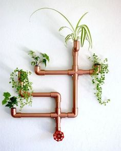 DIY Copper PVC Wall Planter Hi guys! I love finding delightful and unexpected way of displaying indoor plants in my home. This easy DIY wall planter is not only functional but it makes for a great conversation piece, and has the… Diy Wall Planter, Diy Planters, Planter Ideas, Copper Planters, Garden Planters, Indoor Wall Planters, Wall Garden Indoor, Wall Mounted Planters, Balcony Garden